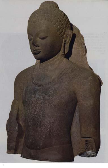 1.サールナート考古博物館「仏立像(上半身のみ)」